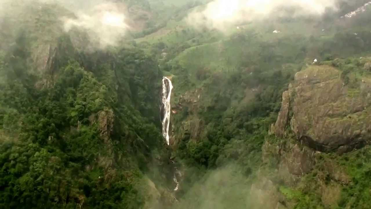 Image result for Coonoor dolphin nose