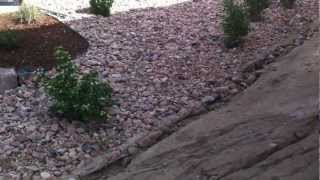 Landscaping Installation Denver Landscaping Contractor Part 1