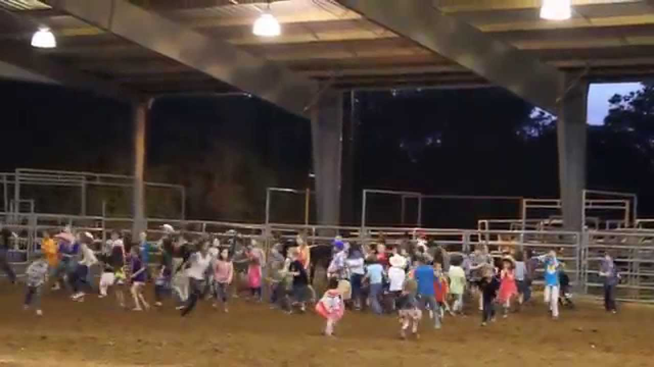Calf Scramble At The Tejas Rodeo Bulverde Texas Youtube