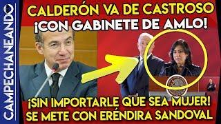 INCHE CALDERÓN VA DE CASTROSO ¡CON GABINETE DE AMLO! - CAMPECHANEANDO