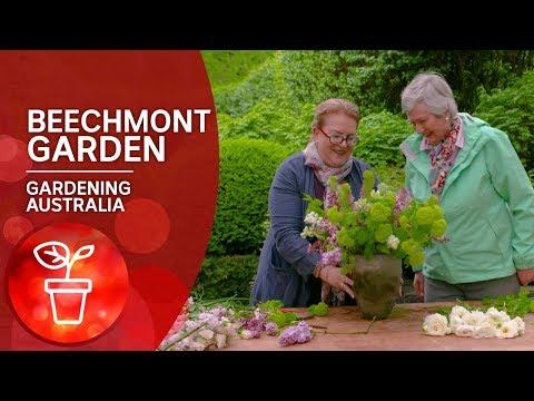 A Florist's Garden — Beechmont