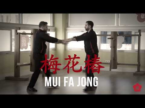 wing-chun---ving-tsun---wing-tsun-kung-fu