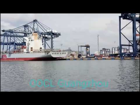 OOCL Guangzhou Full Container Ship #ShipVlog