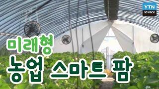 미래형 농업 스마트 팜 / YTN 사이언스