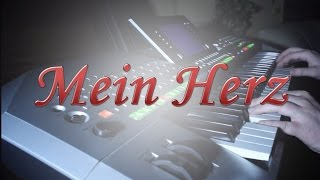 Repeat youtube video Mein Herz | Beatrice Egli | DSDS-Siegersong 2013 (Finale) | Instrumental Cover