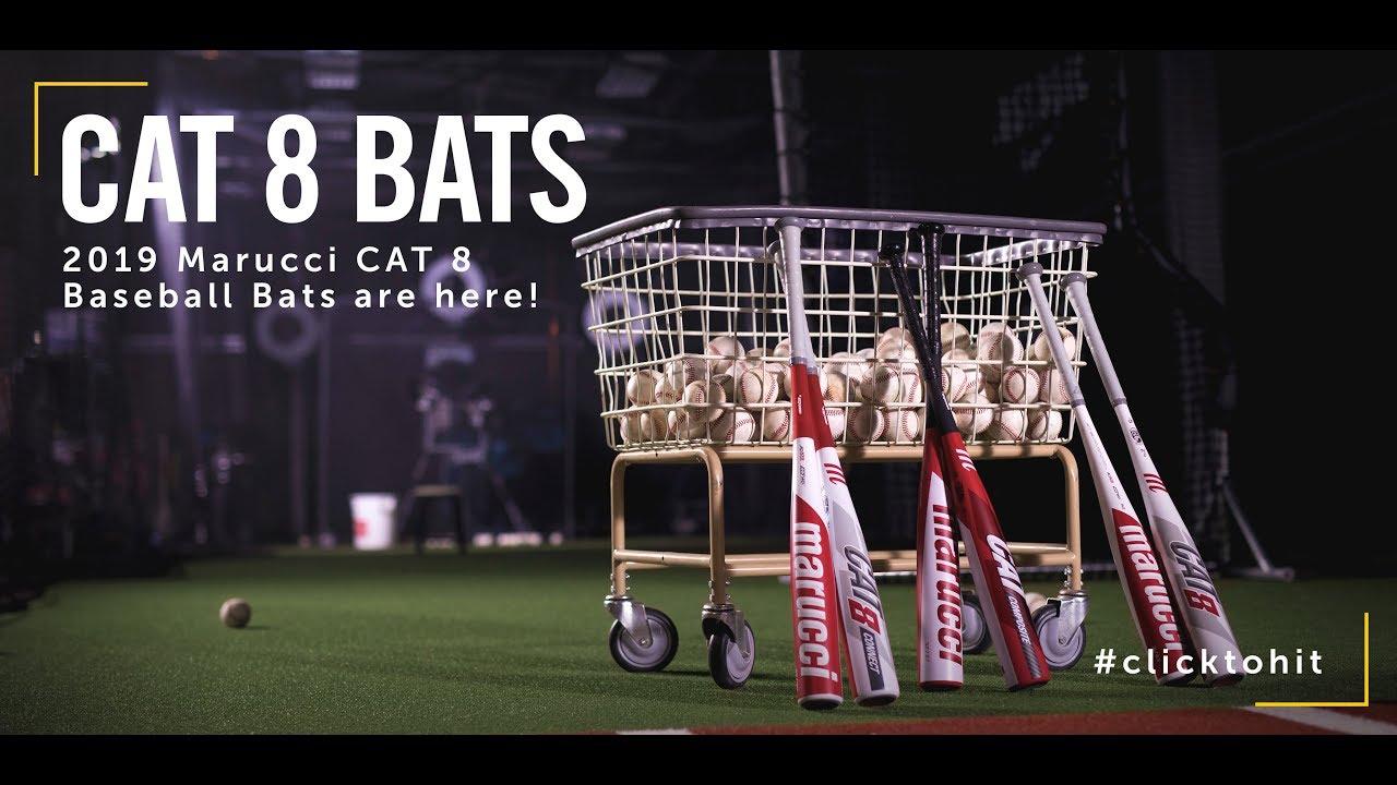 Marucci CAT8 Baseball Bats Q&A | JustBats com