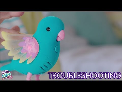 Little Live Pets S8 Light Up Birds Troubleshooting Youtube