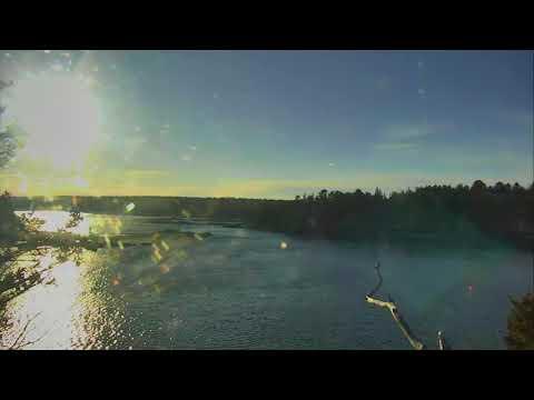 Audubon Osprey Nest Cam 03-16-2018 14:29:03 - 15:29:04