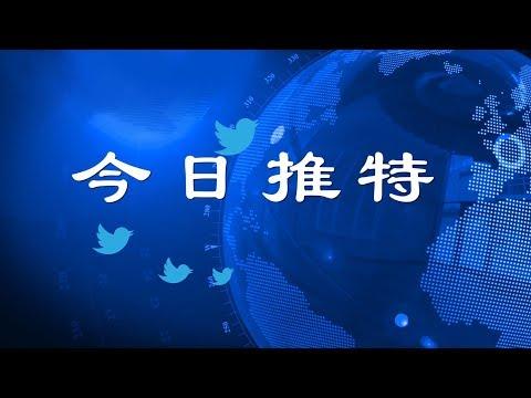 新疆人权迫害被联合国质询,习近平治国理政能力遭质疑《今日推特》第110期(11/6/2018)
