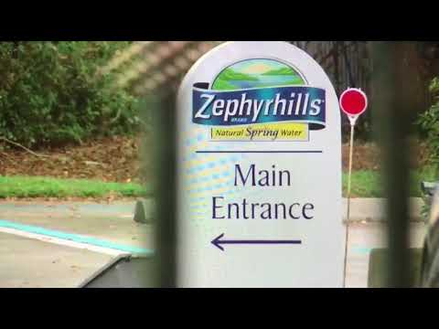 Zephyrhills water not processing new orders | Digital Short