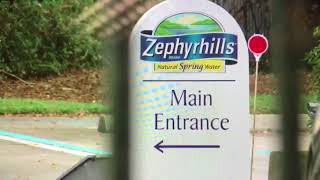 Zephyrhills water not processing new orders   Digital Short