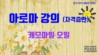 38강 캐모마일 유튜