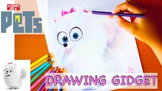 Drawing: GIDGET | Secret Life of Pets |Budget Art