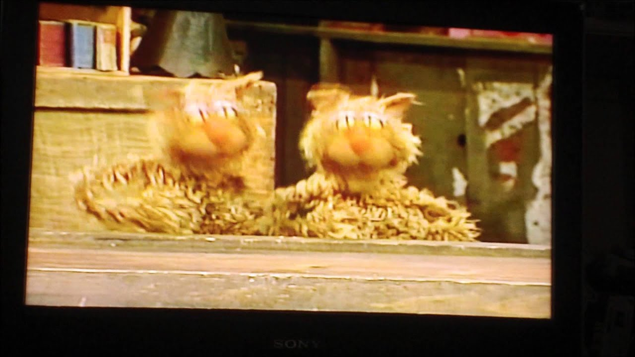 Sesame Street Sing Hoot And Howl Vhs Opening to Sesame Stre...