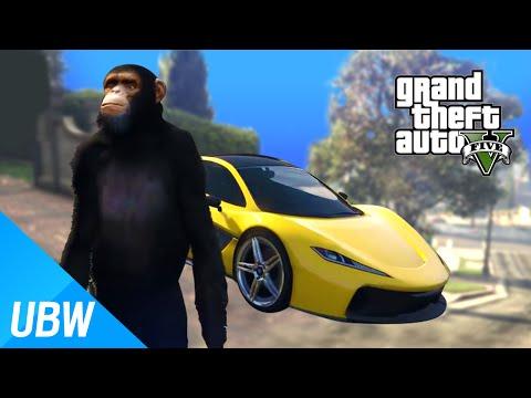 Multiplayer Co-op GTA5
