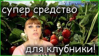 ЙОД - СУПЕР СРЕДСТВО для УРОЖАЯ КЛУБНИКИ!!!
