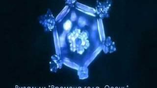 ЖИВАЯ ВОДА или лекарство от природы.(Найдите нас в интернете: http://zdorovee.com http://vkontakte.ru/zdorovee_com http://www.facebook.com/profile.php?id=100001689827126 ..., 2011-06-05T22:23:53.000Z)