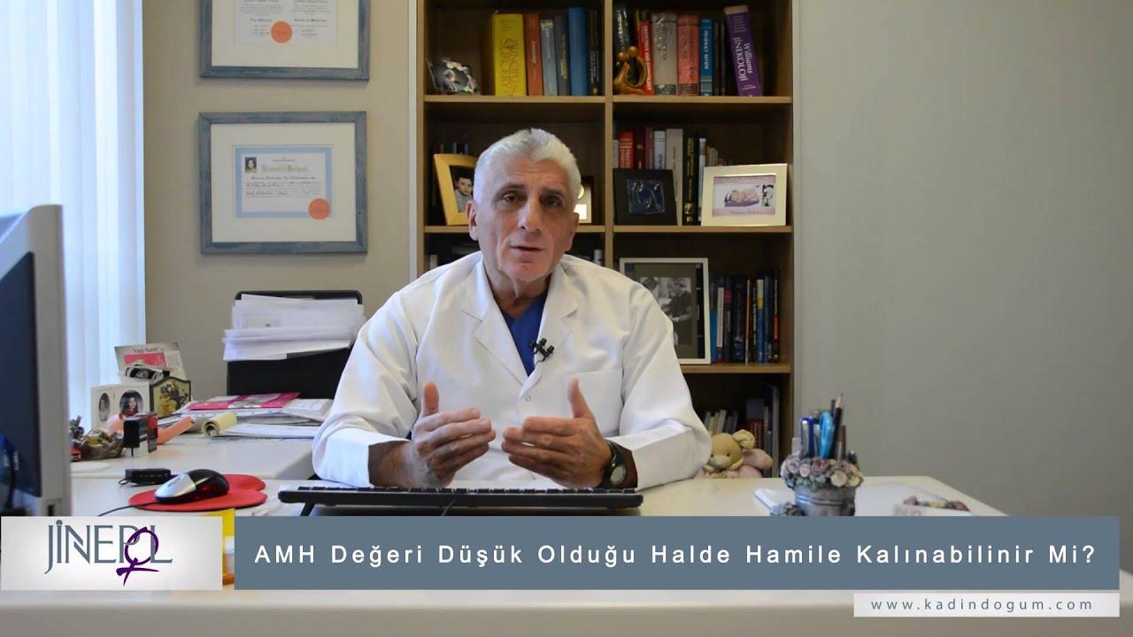 AMH testi nedir AMH Testi Ne İçin Kullanılır AMH Seviyesi Düşük Çıkarsa Ne Olur