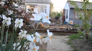 видео Відпочинок за кордоном: зима, весна, літо чи осінь?