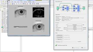 IRIS Recognition using Neural Network LVQ and Cascade forward back propogation