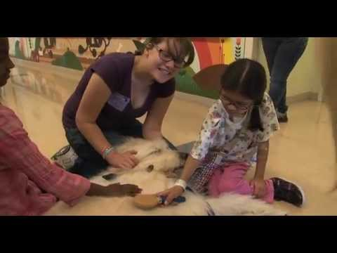 UCLA People Animal Connection  Pet Therapy - UCLA Health