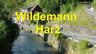 Wildemann im Harz🌲🌳🏞🌍Video - Hübsche kleine Bergbaustadt im Harz thumbnail