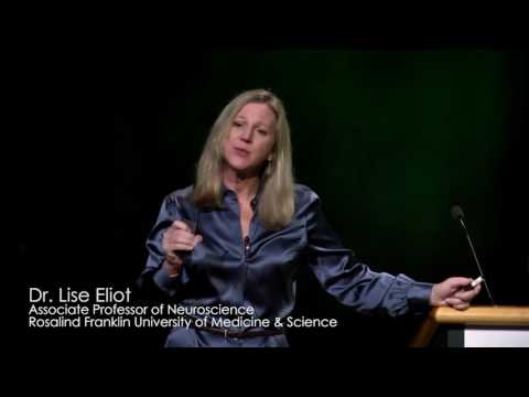 Dr Lise Eliot - The story of pink and blue