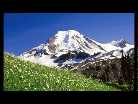 Polka Oberkrainer Oktoberfest Tiroler Harmonika Accordeon Alpen Volksmusik 3