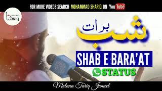 Shab E Barat   Molana Tariq Jameel   WhatsApp Status