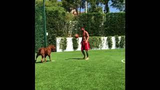 Месси поиграл в футбол с гигантской собакой