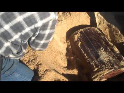 Rocky & Cladiator † s Buried Treasure