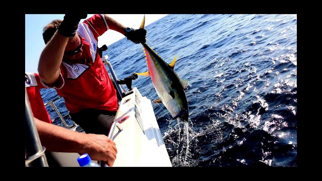Wave dancer deep sea fishing st lucia south africa wave for Deep sea fishing st lucia