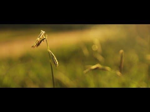 Ben Folds - Still (Unofficial Music Video)