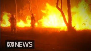 Queensland Bushfires See 87 Blazes Raging Across The State | ABC News