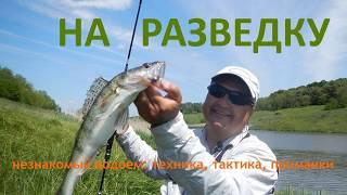 Ловля судака и окуня на спиннинг. Как искать рыбу на незнакомом водоеме? [Crazy Fish]