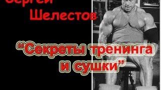 видео Сергей Шелестов