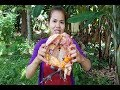 Awesome Cooking Curry Chicken Recipes-Cooking Curry Chicken Recipes-Village Food Factory-Asian Food