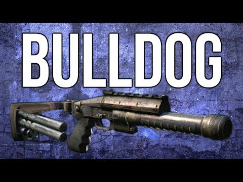 Ghosts In Depth - Bulldog Shotgun Review (& Best Class)