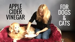 Apple Cider Vinegar for Dogs and Cats -  Fleas, Allergies, Bladder Infections - Earth Clinic