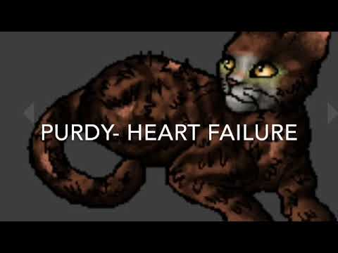 Warrior Cats All Deaths In A Vision Of Shadows 2 Spoiler Warning