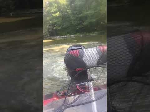 Ohio River Madness