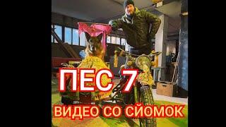 Пёс-7 эксклюзивные кадры со съёмок СЕДМОГО СЕЗОНА 2021!