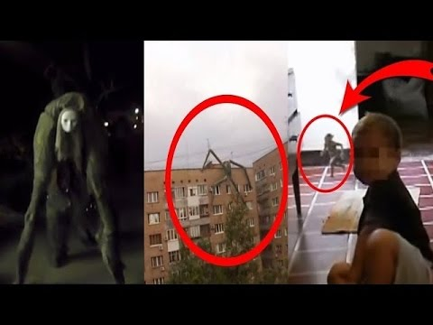 Scary Animals That Are Real 10 Videos Myste...