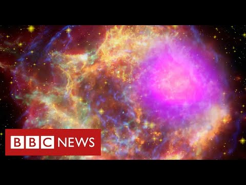 """Scientists find """"strong evidence"""" for new mystery sub-atomic force of nature - BBC News"""