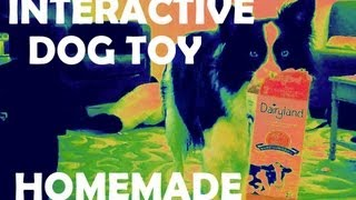 Homemade Treat Dispenser - Interactive Dog Toy For Big And Little Dogs