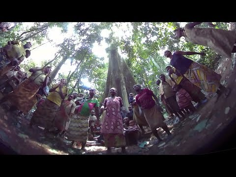 Rainforest music - Baka women sing and dance in the round