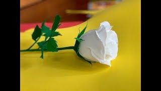 Роза из гофрированной бумаги. Простой способ. DIY