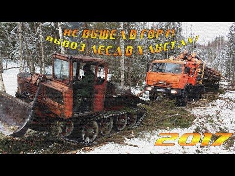 Вывоз леса хлыстами в Плесецком р-не Архангельской области.