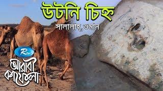 Utni Mark | উটনি চিহ্ন | Ep-19 | Arabi Kafela | Rtv Islamic Show