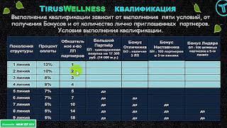 Маркетинг компании Tirus Wellness Бады компании Тайрус